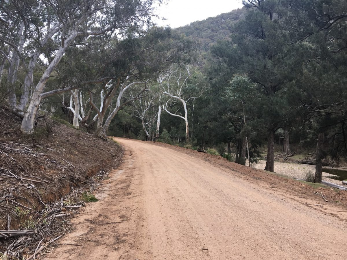 Palmers Oaky Road Upgrade – Biodiversity Assessment and REF